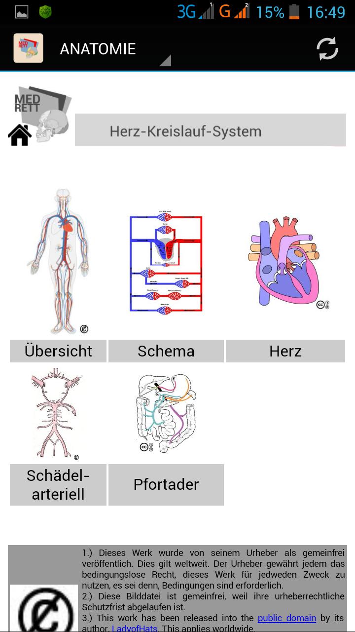 Großzügig Herz Kreislauf Diagramm Ideen - Menschliche Anatomie ...